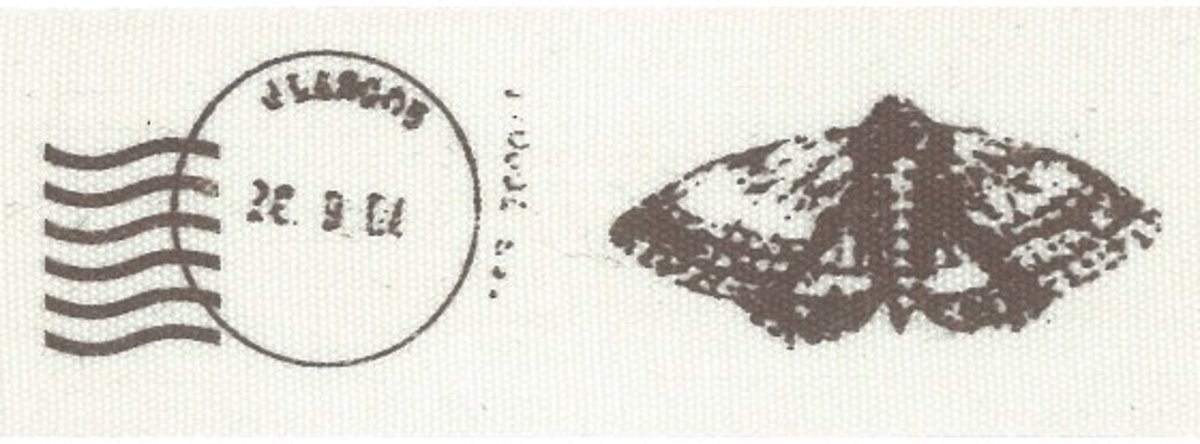 Ribbon 2m 25mm postmark butterfly
