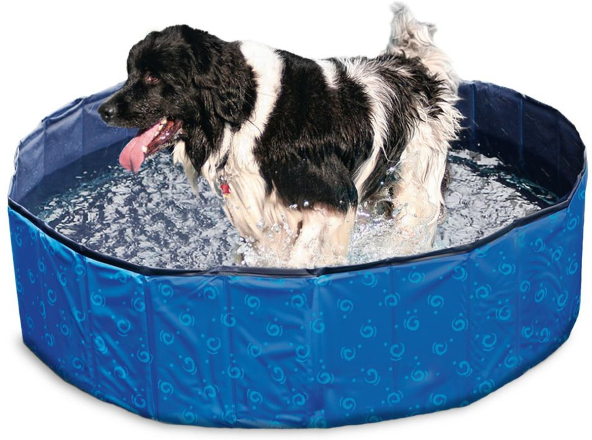 Doggy pool blue 80 x 20cm