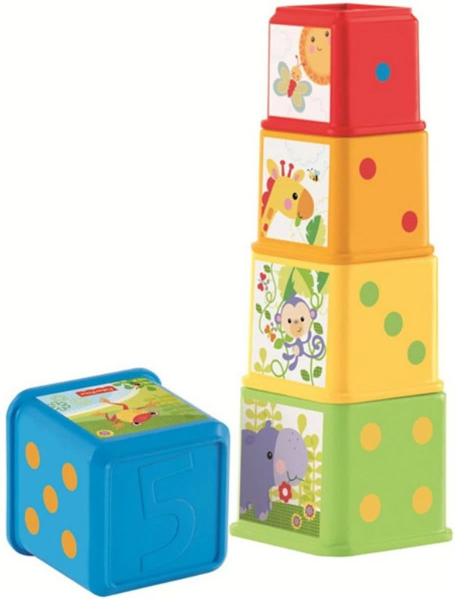 Fisher Price STAPEL & LEER BLOKKEN