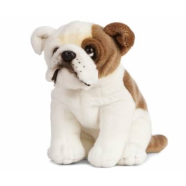Knuffel engelse bulldog, living nature