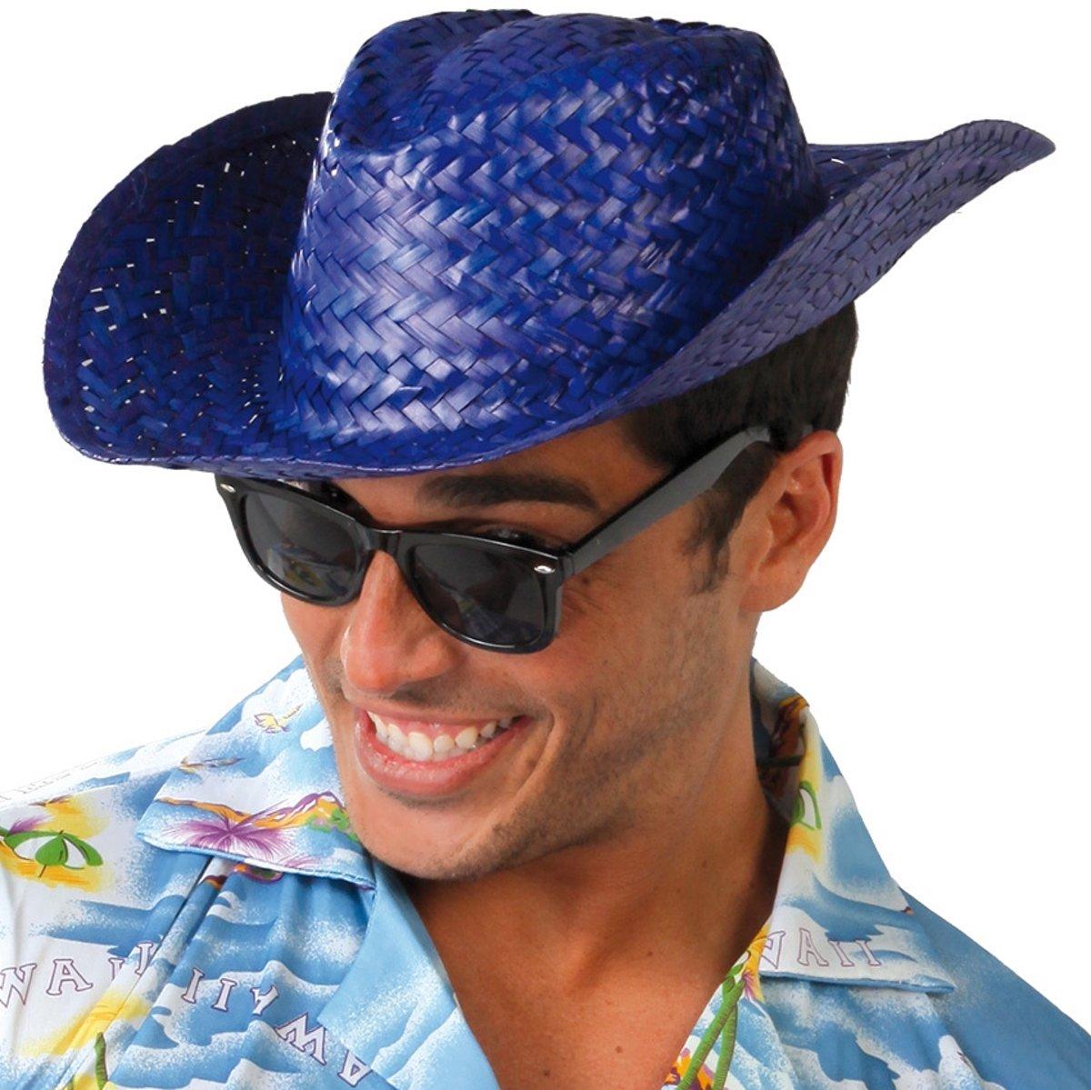 e69d506790a20e Strohoed Blauw Hawaii