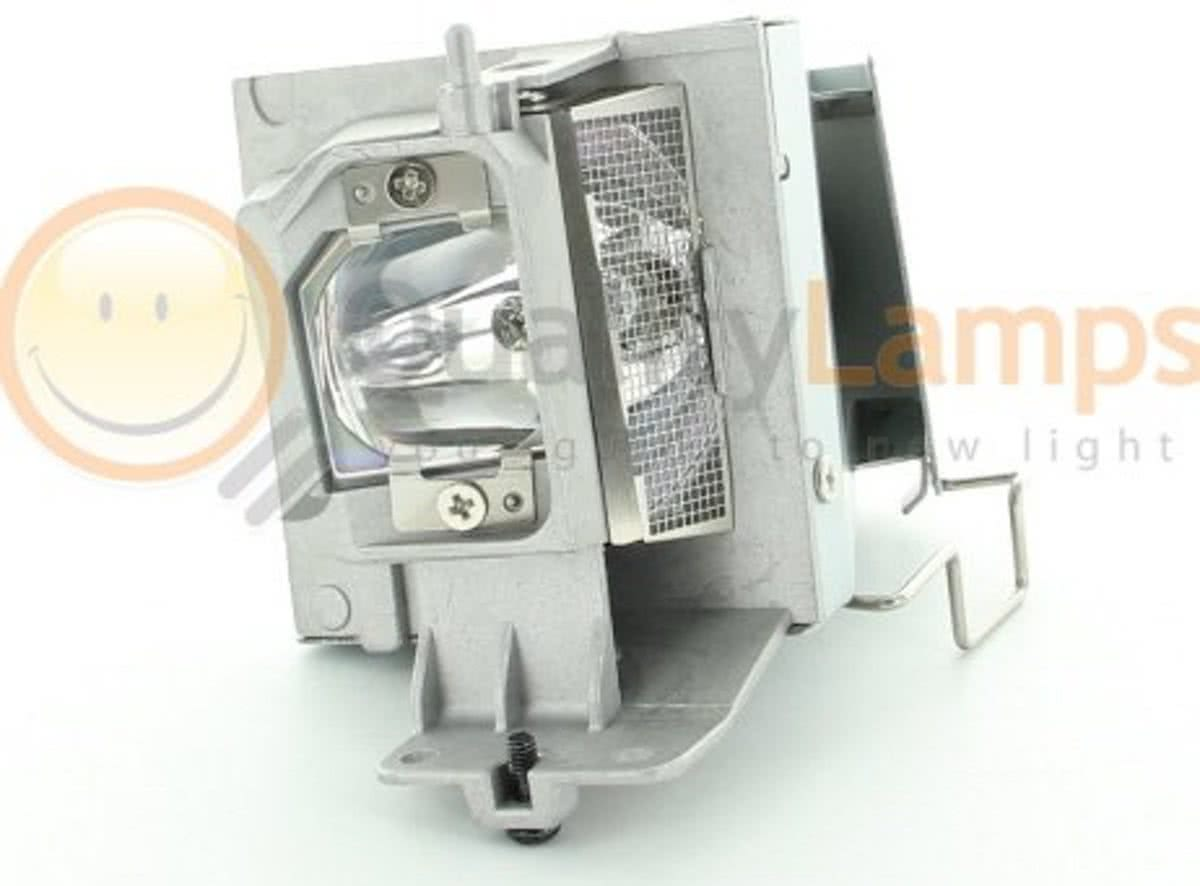 Optoma BL-FU195A / Optoma SP.72G01GC01   (bevat originele UHP lamp)