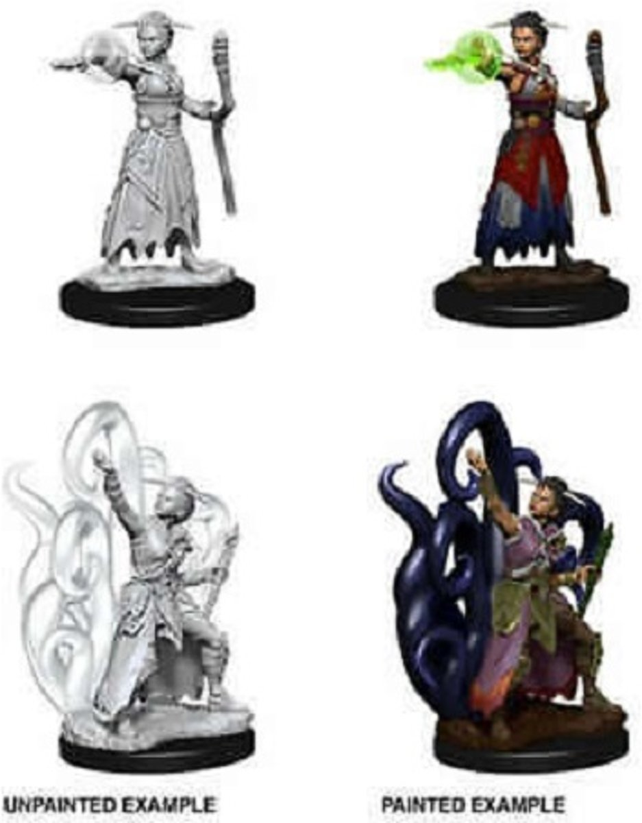 Dungeons and Dragons Nolzurs Marvelous Miniatures: Human Warlock, Female