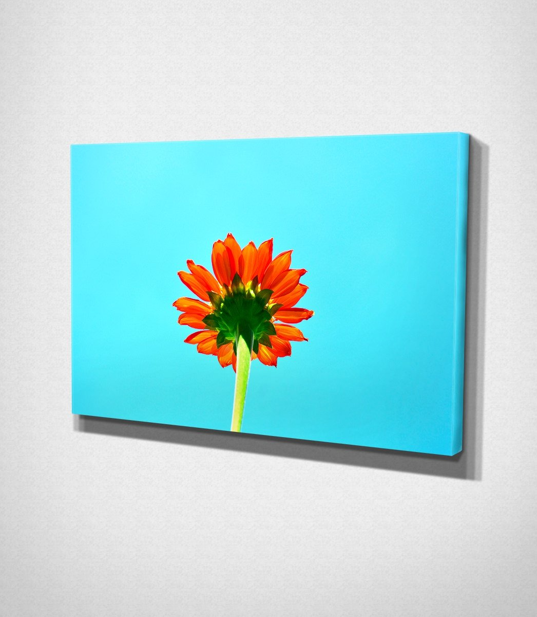 Multicolored Flower Canvas