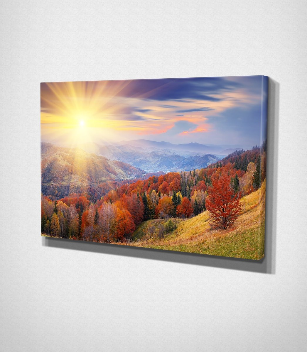 Sunny Landscape Canvas